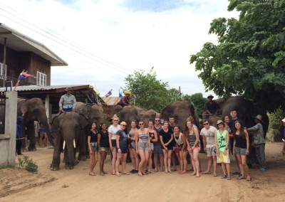 ELEPHANTS,-TEACHING,-CHILDCARE-AND-MEDICAL-IN-SURIN-(35)